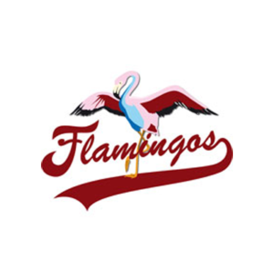 Berlin-Flamingos
