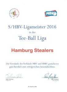 shbvteeballmeister-001